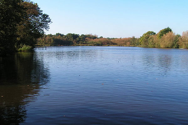 furnace pond horsmonden