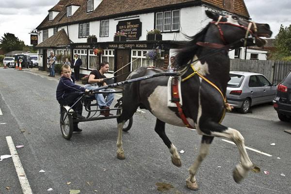 horsmonden gypsy horse fair