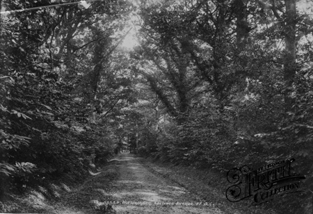 Sprivers Avenue