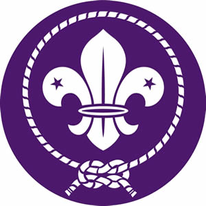 Scouts World Emblem
